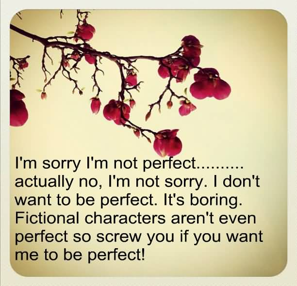 I'm Sorry I'm Not Perfect….Actually No, I'm Sorry. I Don't Want To Be Perfect. It's Boring