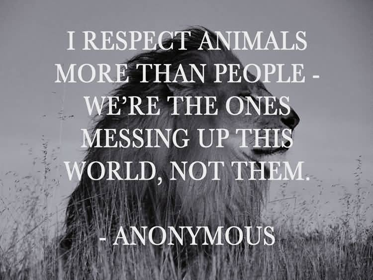 I respect animals more than people we're the ones messing up this world