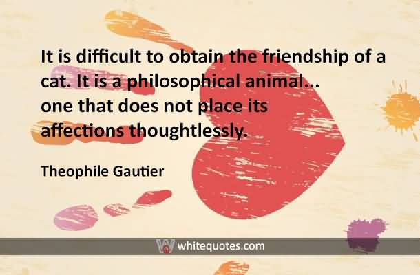 It is difficult to obtain the friendship of a cat. It is a philosophical animal... one that does not place its affections thoughtlessly. Theophile Gau
