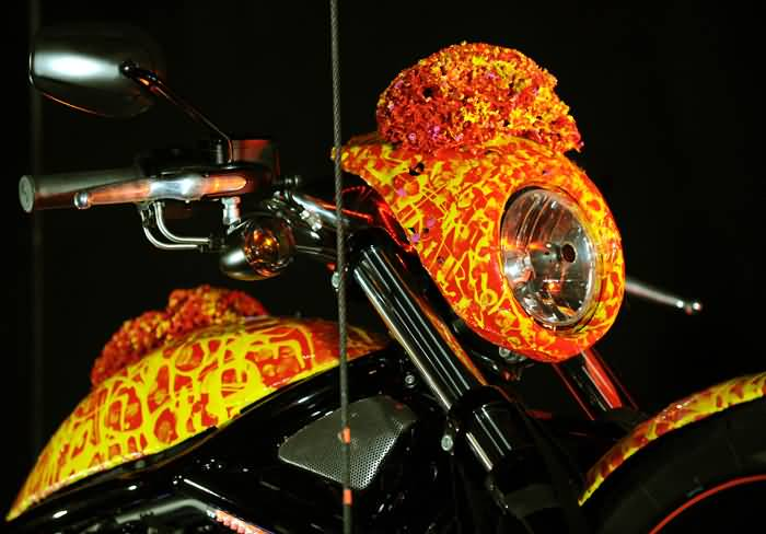 Nice Front Body Of One Million $ Harley Davidson Bike