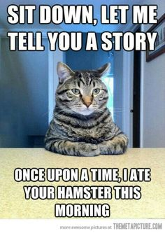 Sit down let me tell you a story once upon a time i ate your hamster this morning