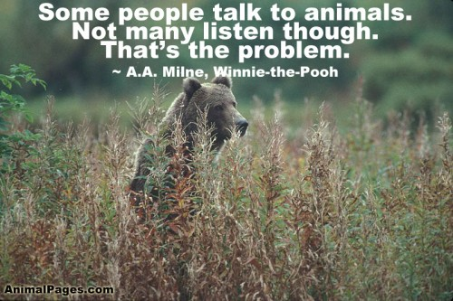 Some people talk to animals not many listen though that's the problem - A.A. Milne