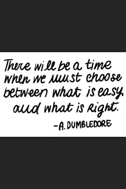 There will be a time when we must choose between what is easy and what is right - A. Dumbledore