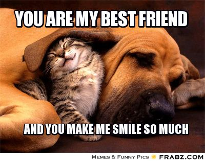 You are my best friend and you make me smile so much funny best friend meme creator segerios com segerios com