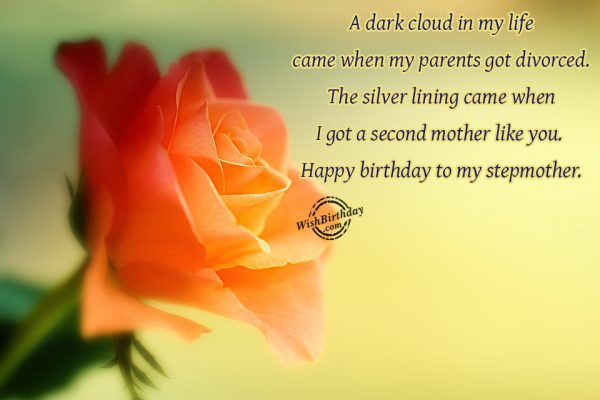 A Dark Cloud In My Life Came When My Parents Got Divorced Happy Birthday To My Stepmother