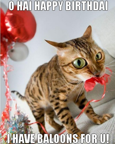 Attractive Funny Birthday Wishes Cat I Have Baloons For U