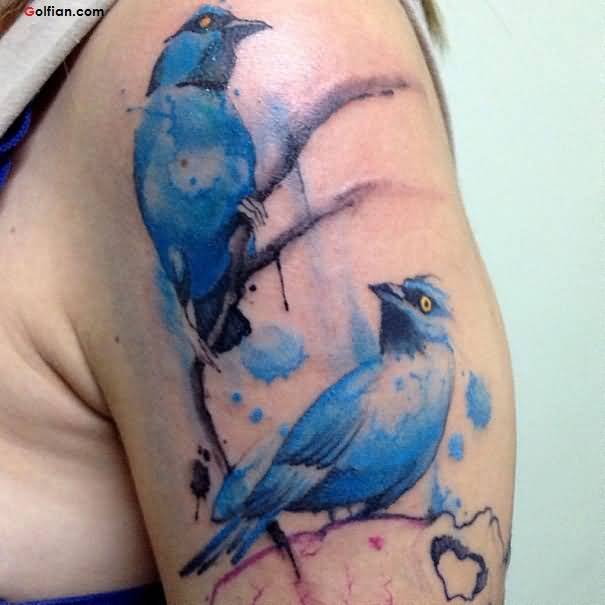 Cute Aqua Bird Tattoo Design Made On Men Shoulder