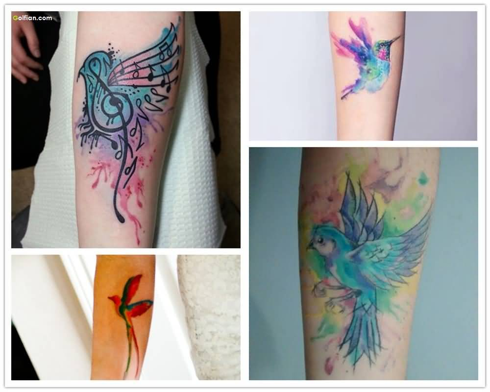 Fabulous Aqua Bird Tattoo Design For Women Sleeve