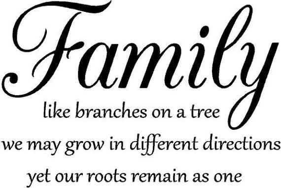 Family like branches in a tree we all grow in different directions yet our roots remain as one.