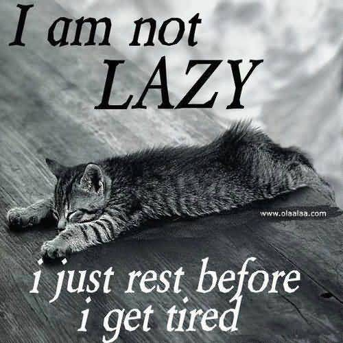 I Am Not Lazy I Just Rest Before I Get Tired
