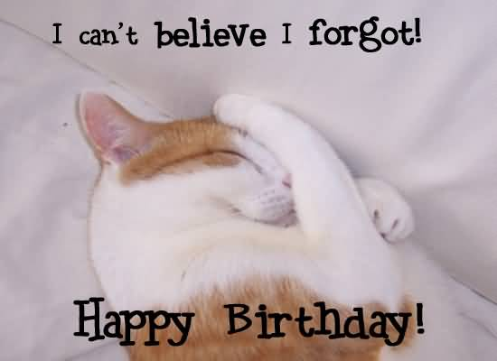 I Cant Believe I Forgot Happy Birthday Cat Picture