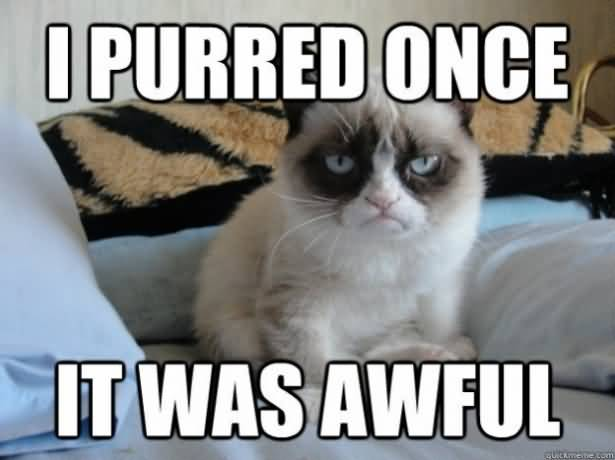 I purred onc it was awful
