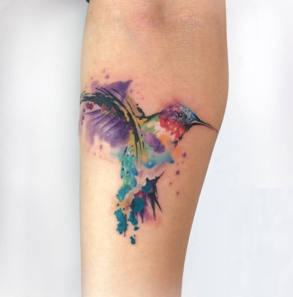 Outstanding Aqua Kingfisher Bird Tattoo For Female Sleeve