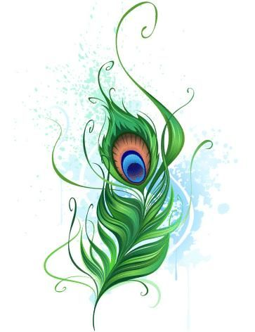 Outstanding Peacock Feather Aqua Tattoo Design