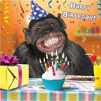 Funny Happy Birthday Images For Him Segerioscom Segerioscom