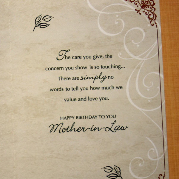 Happy birthday mother in law card segerios segerios the can you give the concern you show is so touching happy birthday mother in law m4hsunfo