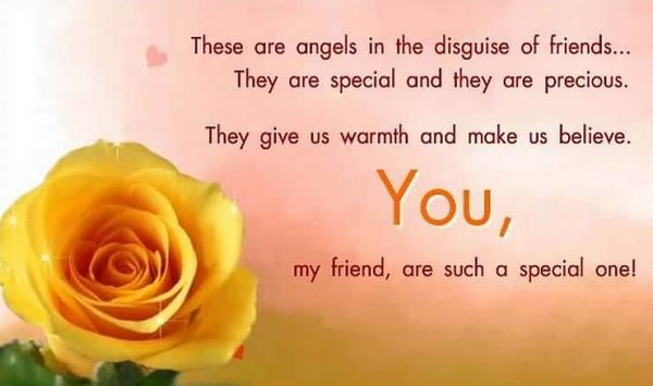 These Are Angels In Disguise Of Friend They Are Special And They Are Precious You My Friend Are Such A Special One