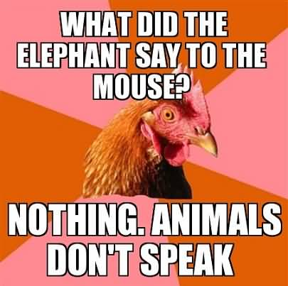 What did the elephant say to the mouse