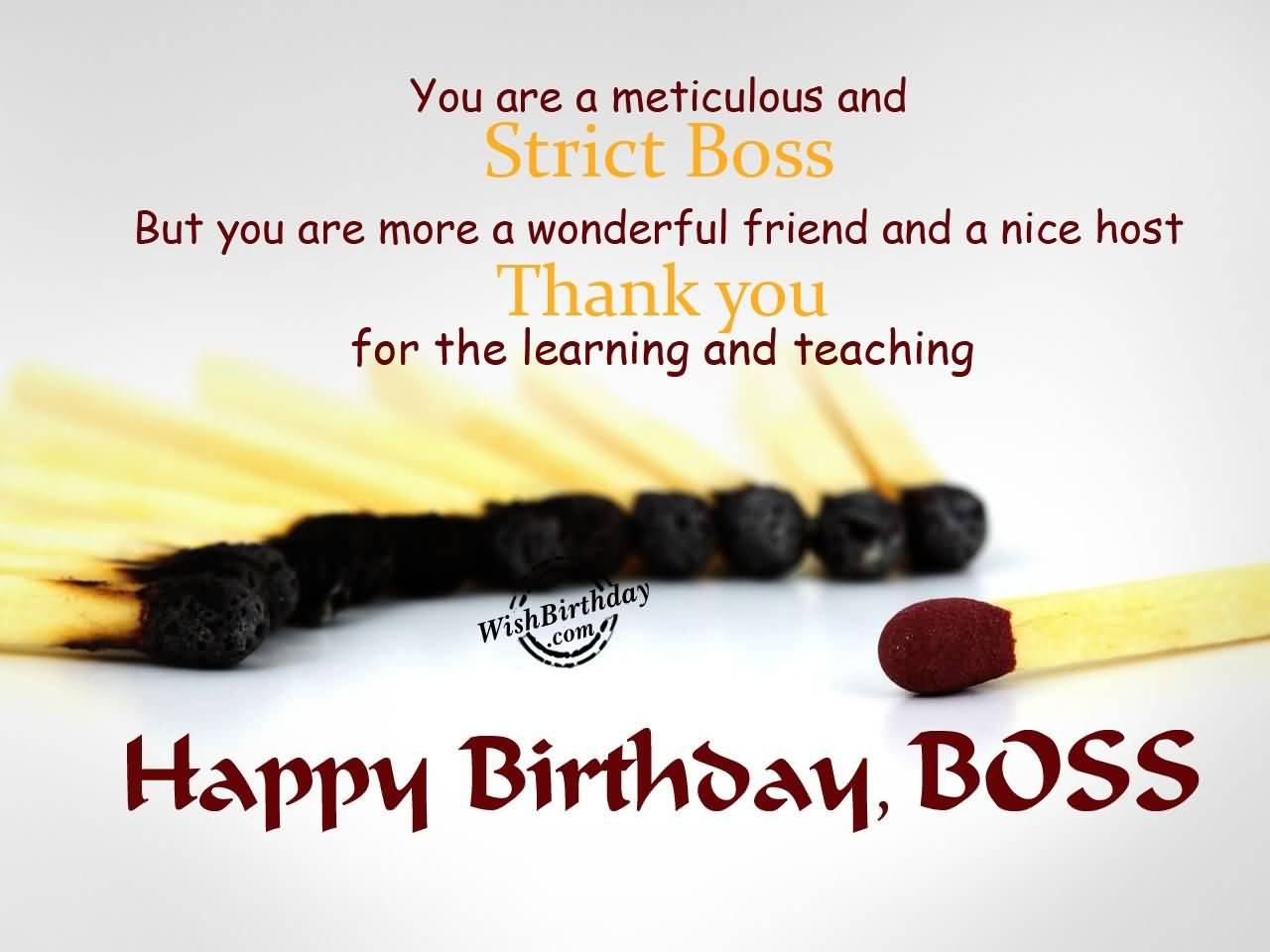 You are a meticulous and strict boss thanks you happy birthday boss you are a meticulos and strict boss thanks you happy birthday boss m4hsunfo