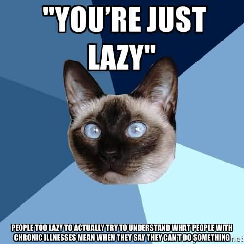 You're Just Lazy People Too Lazy To Actually Try To Understand What People