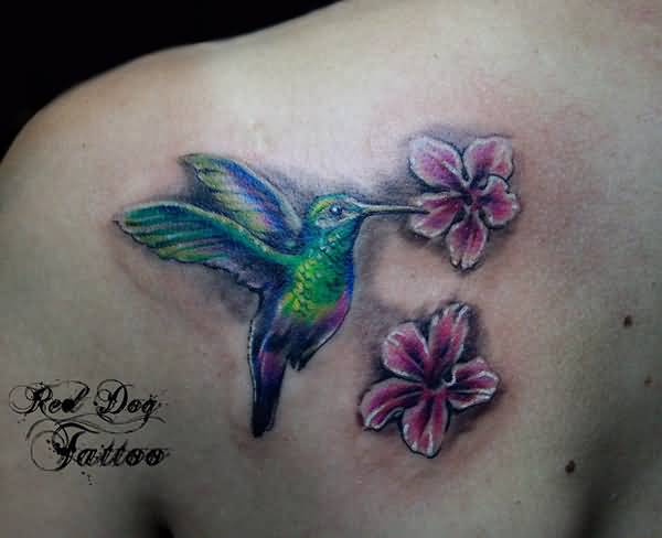 Amazing Colorful Humming Bird Tattoo For Women Back