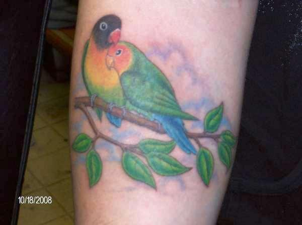 Amazing Colorful Love Bird Tattoo For Women Sleeve