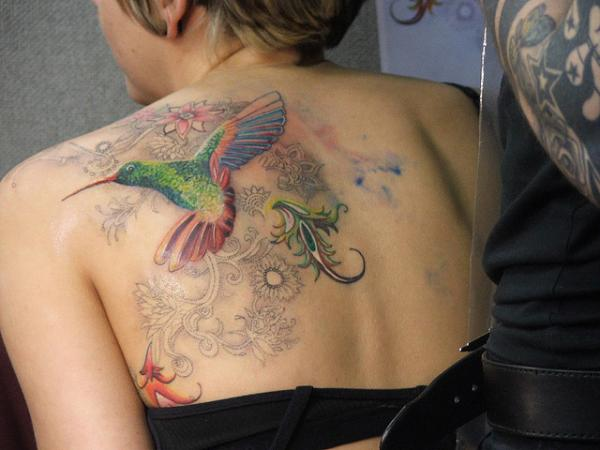 Cute Colorful Kingfisher Bird Tattoo For Women Back Shoulder