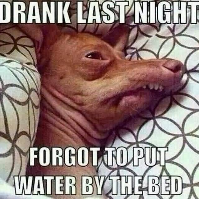Drank Last Night Forget To Put Water By The Bed