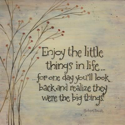 Enjoy the little things in life because one day you`ll look back and realize they were the big things.Kurt Vonnegut
