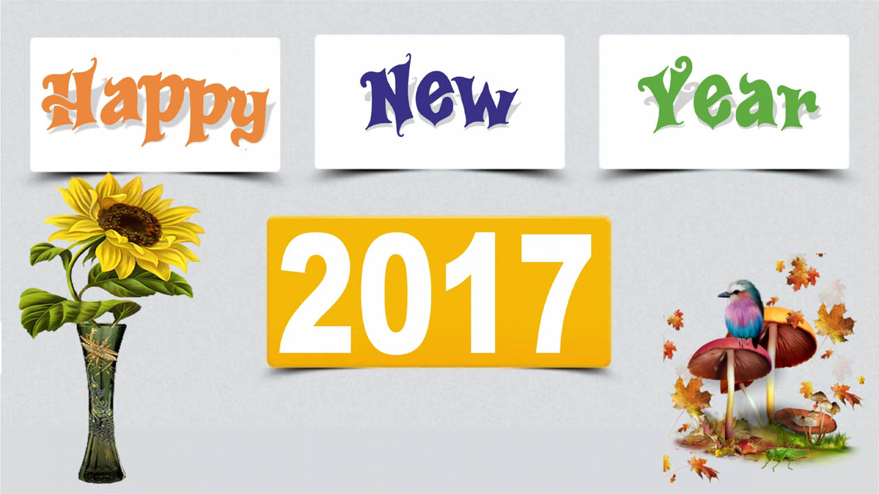 Happy New Year Message Sample
