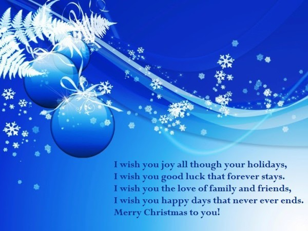 I Wish You Joy All Though Your Holidays I Wish You Good Luck That Forever Stays Merry Christmas To You