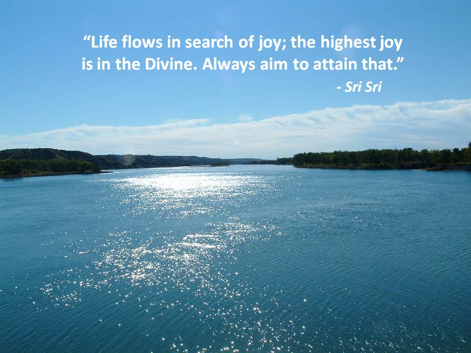 Life flows in search of joy; the highest joy is in the Divine. Always aim to attain that.Sri Sri