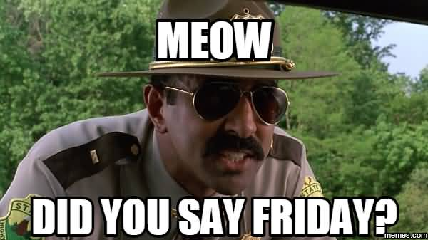 Meow did you say friday