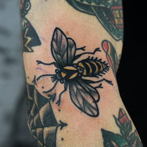 Most Amazing Bee Web Tattoo Design For Elbow