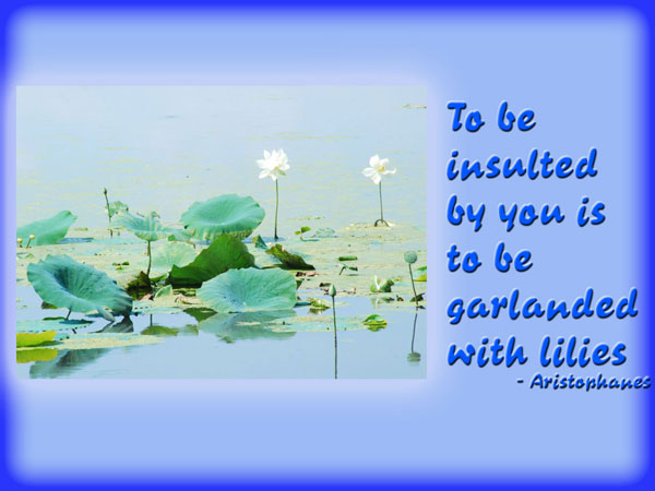 To be insulted by you is to be garlanded with lilies.Aristophanes