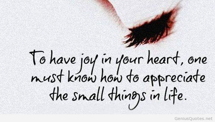 To have joy in your heart, one must know how to appreciate the small things in life