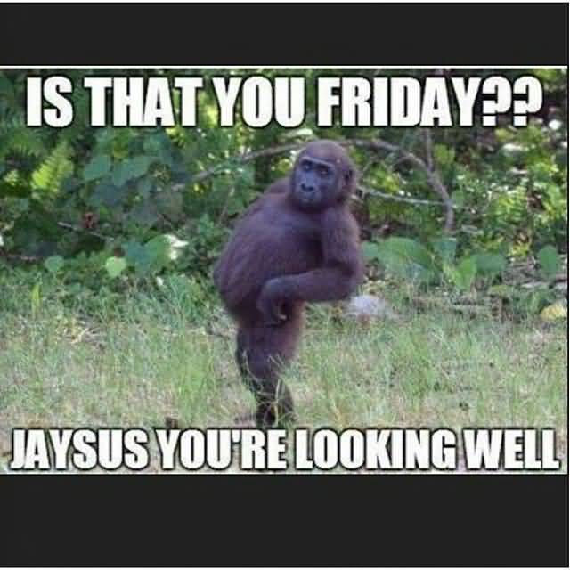 is that you friday jaysus you're looking well