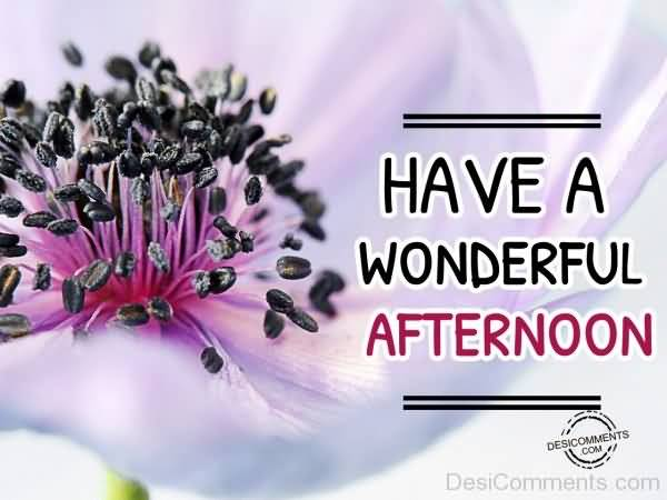 50 beautiful good afternoon greetings and wishes gallery m4hsunfo