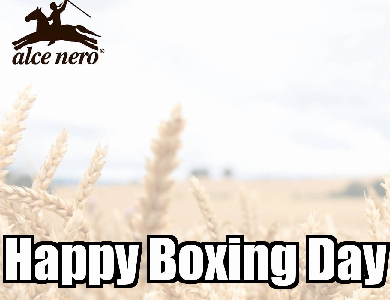 Boxing Day Wishes 34