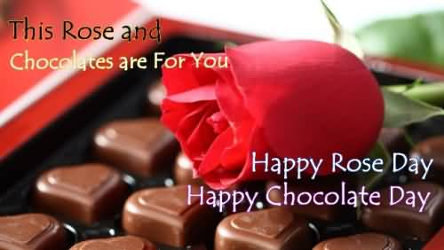 Chocolate Day Wishes 04