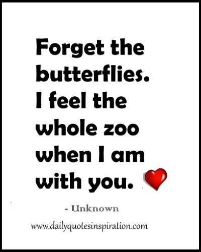 Cute Funny Love Quotes For Her- Forget the butterflies. I feel the whole zoo when I am with you