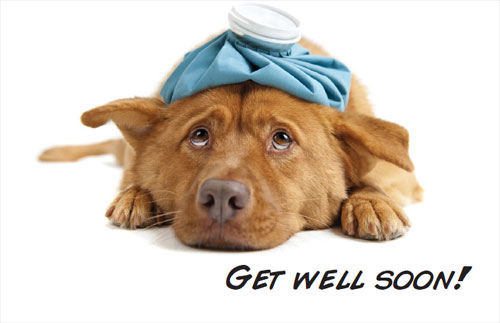 Get Well Soon Wishes 06
