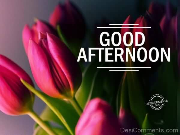Best good afternoon greeting for friends good afternoon wishes 03 m4hsunfo