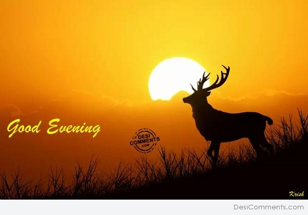 Good Evening Wishes 17