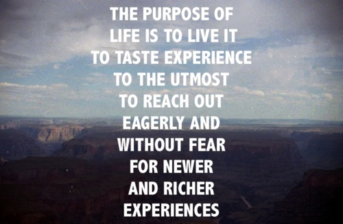 Life Experience Quotes 27