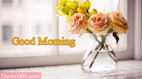Good Morning Wishes 24