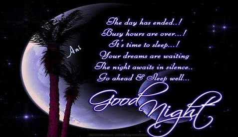 Good Night Wishes 60