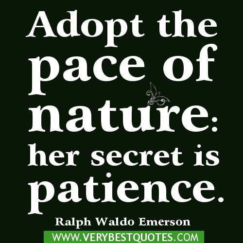 Patience Quotes 022