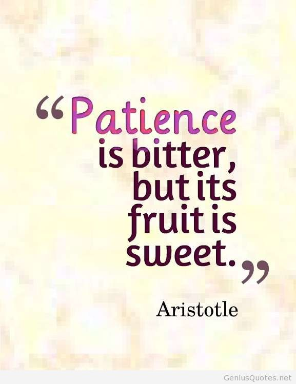 Patience Quotes 031