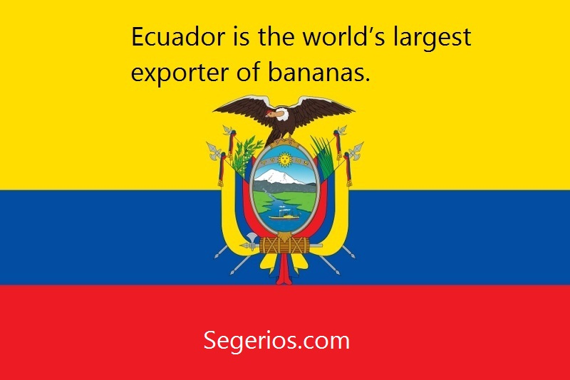 01 @ Ecuador Facts